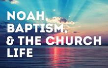 noah, baptism, the church life