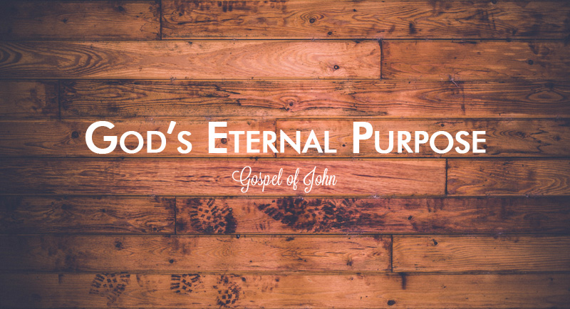 the purpose of johns gospel essay John's christology florin păuleţ sj of the gospel have undergone an experience of faith in jesus christ as saviour world with the purpose of leaving it.
