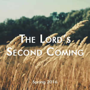 spring 2016 bible study