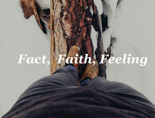 Fact, Faith, Feeling