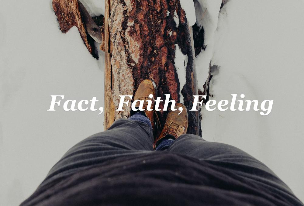 fact faith feeling